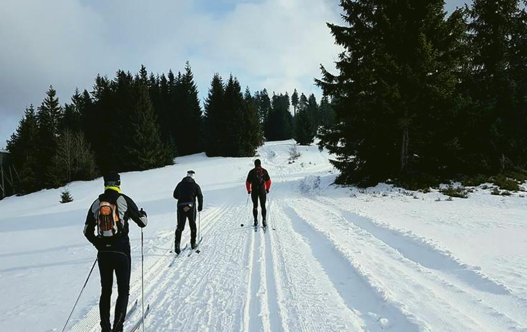 Szlaki-Narciarstwa-Biegowego_1